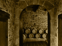Barrels inside Pittacum Winery in Bierzo